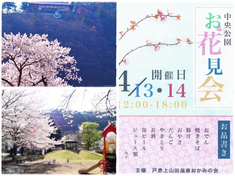 桜のお花見会(中央公園)戸倉上山田温泉おかみの会