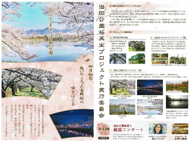 千曲市治田公園桜祭り