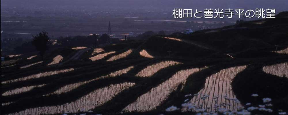 棚田と善光寺平の眺望