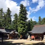 【参加者募集】佐良志奈神社でヨガ~千曲新名物「千曲あんとろ」試食付き!~