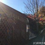 日本の歴史を学ぼう!日本歴史館&秋の城山情報