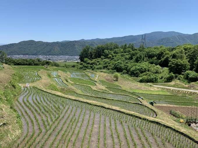 棚田は日本の原風景